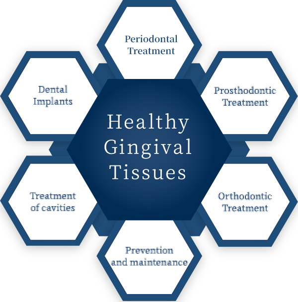 Gingival tissues